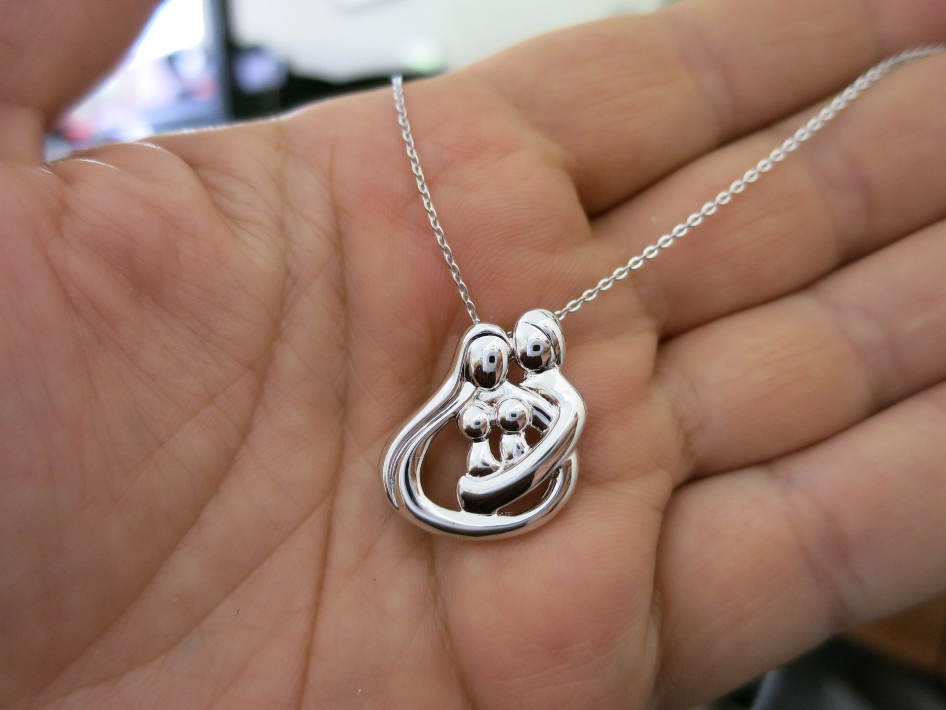 Picture of Silver 2 Parents and 2 Child Family Necklace